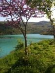 Kayapa Gölü