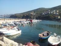 Kumyaka Yat Limanı
