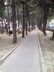 Çamlık Park
