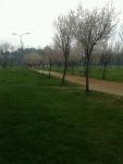 Ziraat Parkı